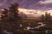 Jeffry Krafft - Wetlands
