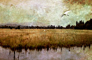 Margaret Hormann Bfa Framed Prints - Wetlands Framed Print by Margaret Hormann Bfa