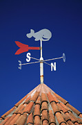 Wind Direction Posters - Whale weather vane Poster by Gaspar Avila