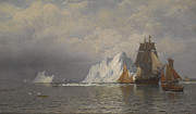 Fishing Paintings - Whaler and Fishing Vessels near the Coast of Labrador by William Bradford
