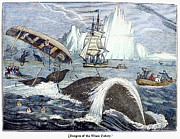 1833 Framed Prints - Whaling, 1833 Framed Print by Granger