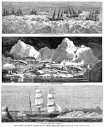 Whaling Fleet In Ice, 1876 Print by Granger
