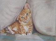 Cat Pastels - What by Elizabeth  Ellis