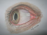 Eye Drawings - What The Eye Tells You by Safa Al-Rubaye