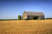 Old - Wheat Field Barn by Joel Witmeyer