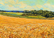 Limburg Paintings - Wheat field in Limburg by Nop Briex