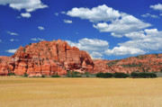 Jay Mudaliar - Wheat fields at Zion NP