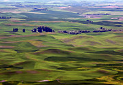 Farm Towns Framed Prints - WHEAT FIELDS of the PALOUSE - EASTERN WASHINGTON STATE Framed Print by Daniel Hagerman