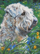 Soft Puppy Posters - Wheaten Terrier Poster by Lee Ann Shepard