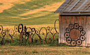 Shed Posters - Wheels of the Palouse Poster by Sandra Bronstein
