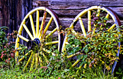 Wagon Wheels Photo Posters - Wheels Poster by Wayne Stadler