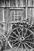 Wagon Wheels Photo Posters - Wheels Wheels and More Wheels Poster by Crystal Nederman
