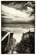 Beach Scenery Metal Prints - When I was a child - Sepia Metal Print by Hideaki Sakurai