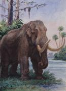 National Geographic Society Art Prints - When The Age Of Man Began, The Mastodon Print by Charles R. Knight