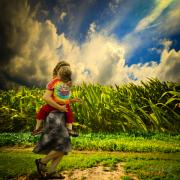 Farm Photos - When The Sun Comes After Rain by Bob Orsillo