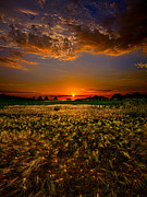 Horizons Framed Prints - When Time Stood Still Framed Print by Phil Koch