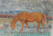 Wyoming Drawings - When You and I Were Young by Dawn Senior-Trask