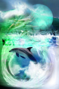 Dolphins Digital Art - Where Do You Go by Wendy Slee