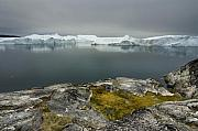 Icebergs Photos - Where Giants are Born by Robert Lacy