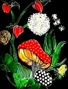 Black Background Painting Framed Prints - Where Magic Mushrooms Grow Framed Print by Amy Carruth-Drum