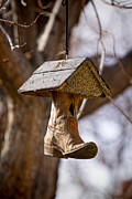 Birdhouse Photos Photos - Where Old Cowboy Boots Go by James Bo Insogna