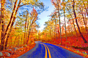 Arkansas Photo Posters - Where the Road Snakes Poster by Douglas Barnard