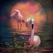 Birds Mixed Media Prints - Where The Wild Flamingo Grow Print by Carol Cavalaris