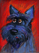Svetlana Novikova Drawings - whimsical Schnauzer dog painting by Svetlana Novikova