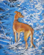 Whippet Painting Prints - Whippet Print by Lee Ann Shepard