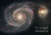Surveys Posters - Whirlpool Galaxy Poster by NASA / ESA / Space Telescope Science Institute