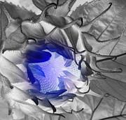 Sian Lindemann - Whisper Blue