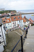 Sally Barnett - Whitby