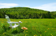 Country Cottage Digital Art Posters - White adirondack chair in a field of tall grass Poster by Sandra Cunningham