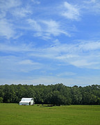 Natchez Trace Prints - White Barn Blue Sky No. 2 Print by Phil Brown