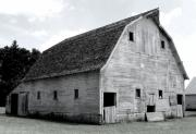 Barn Photos - White Barn by Julie Hamilton