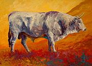 Cattle Painting Prints - White Bull Print by Marion Rose