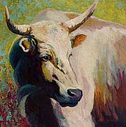 Barns Prints - White Bull Portrait Print by Marion Rose
