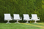 Empty Chairs Prints - White Chairs on A Lawn Print by Don Mason