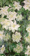 White Flower Paintings - White Clematis by Claude Monet