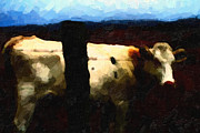 Wings Domain Art - White Cow Behind Fence at Night by Wingsdomain Art and Photography