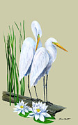Kevin Brant Prints - White Egrets and White Lillies Print by Kevin Brant