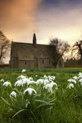 Overcast Day Prints - White Flowers With A Small Church In Print by John Short