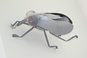 Insect Sculpture Metal Prints - White Fly Metal Print by Michael Jude Russo