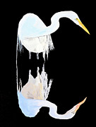 Acrylic On Canvas - White Heron by Eric Kempson