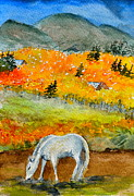 Tin Roof Paintings - White Horse by Beverley Harper Tinsley