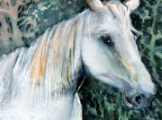 Mixed Media Drawings Prints - White Horse Print by Mindy Newman