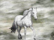 Sajjad Musavi - White Horse watercolor