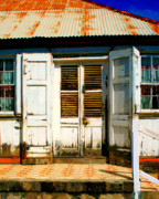 Rusted Tin Roof Photos - White House by Perry Webster