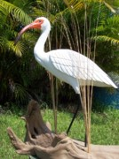 Fathers Sculptures - White Ibis sculpture 27 inches www rodbecklund com by Rod Becklund