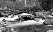 Cascading Water Prints - White in Black Print by Mark Lucey